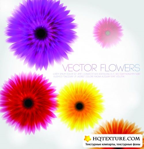Stock Vector - Colorful Backgrounds 2