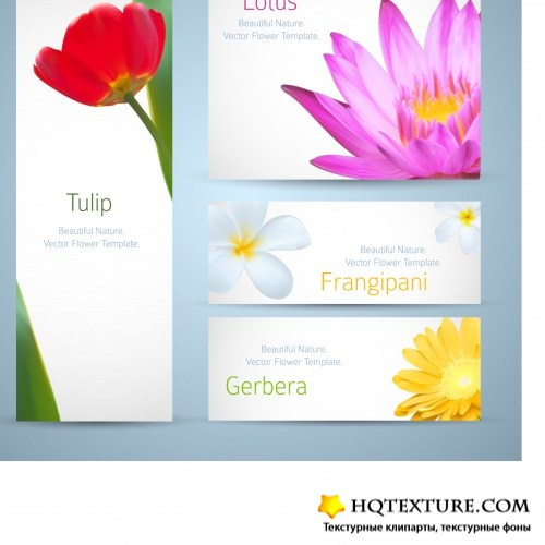 Beautiful floral design for banners