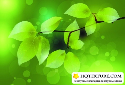 Green Leaves Backgrounds Vector 2