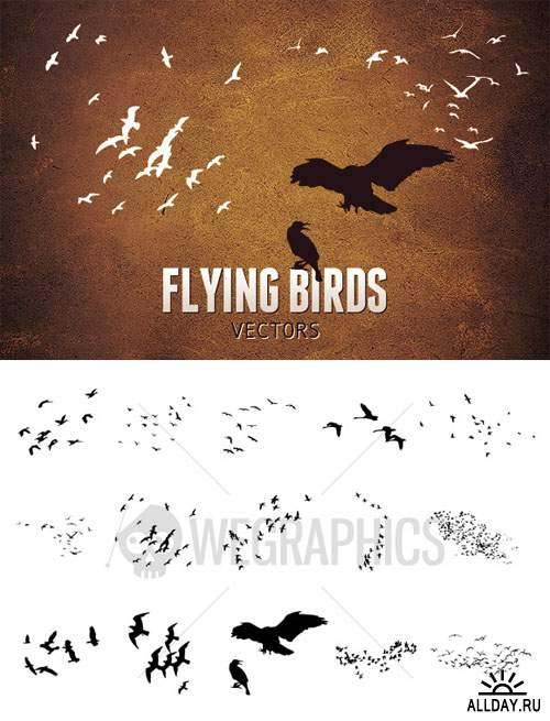 WeGraphics - Flying Birds Vector Set