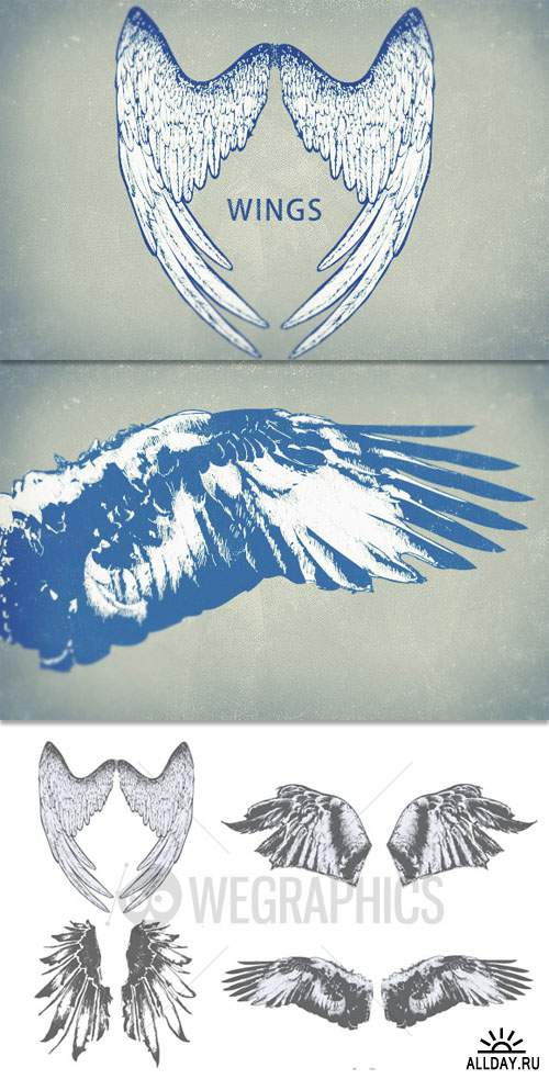 WeGraphics - Highly detailed wings