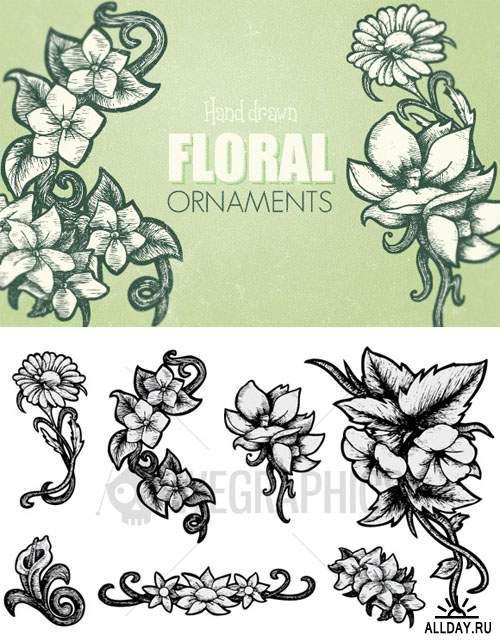 WeGraphics - Hand Drawn Floral Ornaments