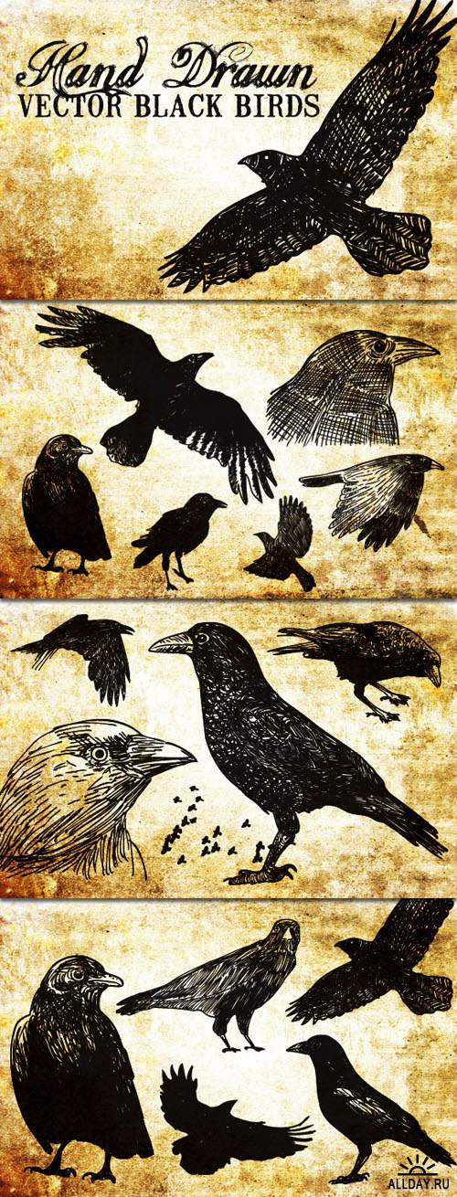 WeGraphics - 20 Hand Drawn Vector Black Birds