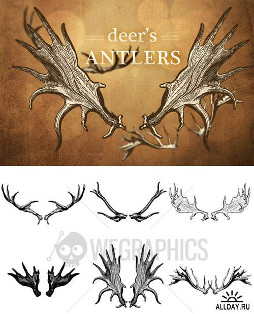 WeGraphics - Deer's antler illustrations