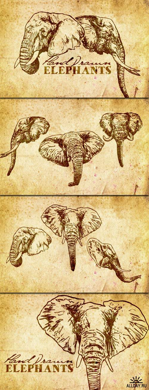 WeGraphics - Hand Drawn Elephant Vectors